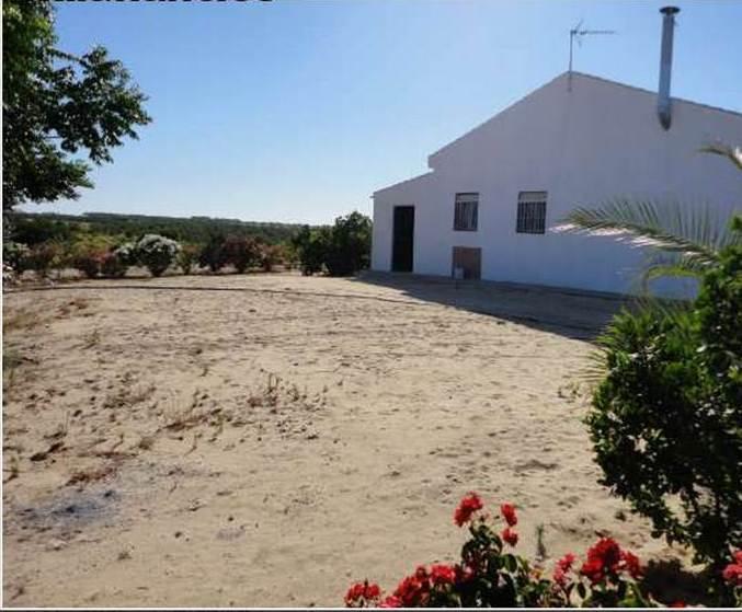 Casas de alquiler en huelva - Alquiler casa playa huelva ...