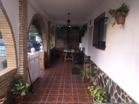 Casas de alquiler en sevilla for Alquiler de casas en lebrija sevilla